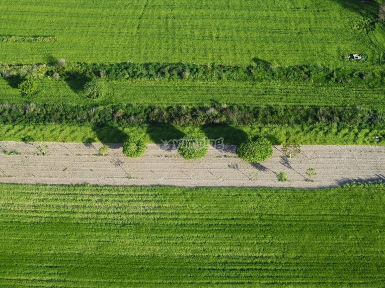 Flying field surroundings