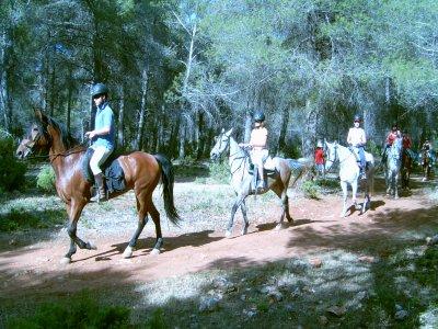 Ruta a caballo de Arroyo Molinos Cazorla 2h 30min