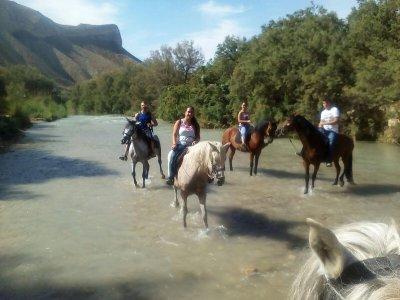 Ruta a caballo Rio Guadiana Menor Cazorla 2h 30min