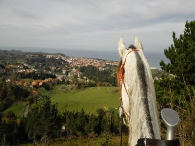 Horse riding tour in Ribadesella 1 hour