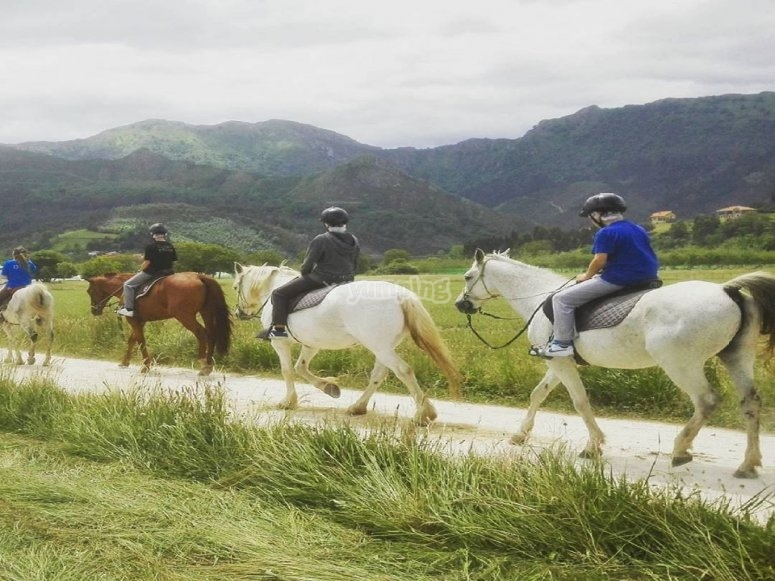 Advancing the route with the horses