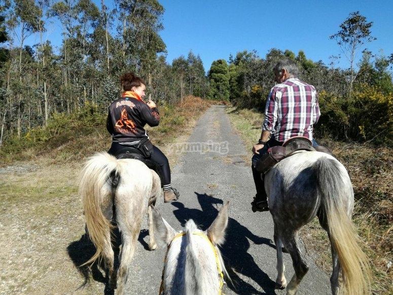Ride for two on horseback Ribadesella