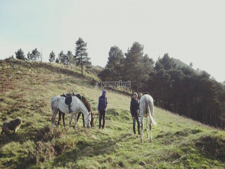 Ribadesella Valley on horseback