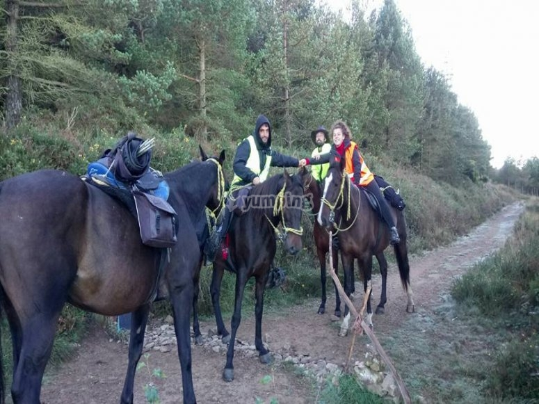 Horse tour for experienced people