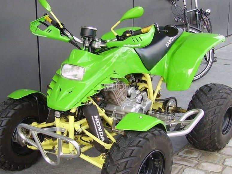 quad verde.