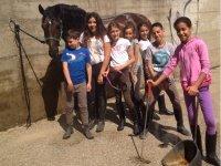 Impariamo a cavalcare un cavallo