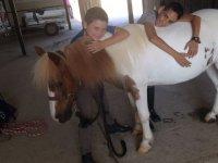 Abbraccio dell'equino
