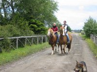Horseback riding along the dirt road