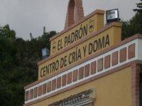 Porta di El Padrón