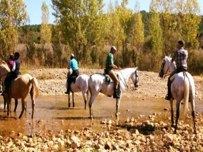 Horse riding in Vilecha 1 hour