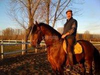 Paseo a caballo León todo el día
