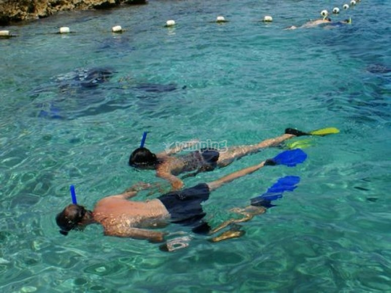 pareja realizando snorkel