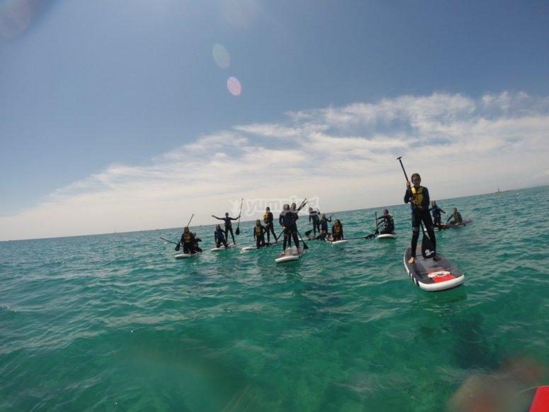 Alquiler en grupo de tablas de paddle surf