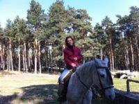 骑马穿越森林