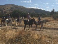 Horse Ride Around Cañada Real 1 hour