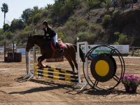 Horse-riding lessons tame and jump in Segovia