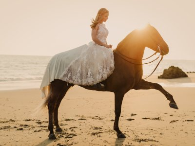 Wedding or Communion Photo Session w/ Horses