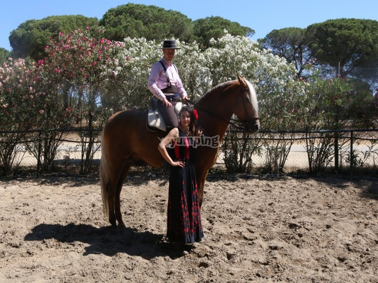 Flamenco y caballos