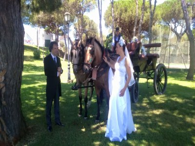 Giro in carrozza per matrimoni a Huelva