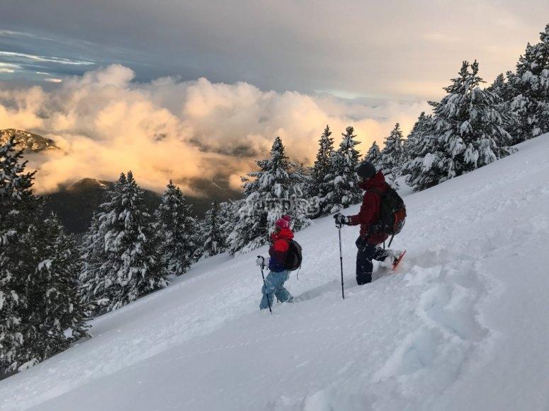 Climbing up the snow