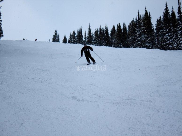 Vieni a sciare