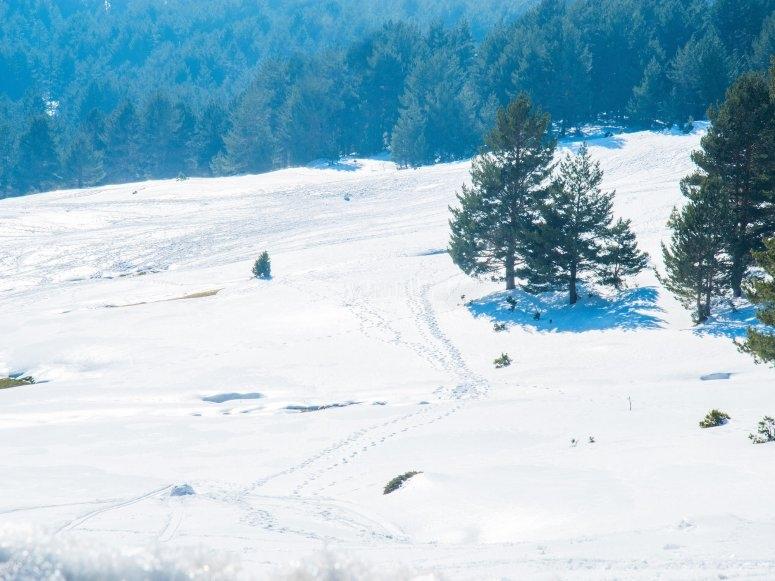 Excursión motos de nieve