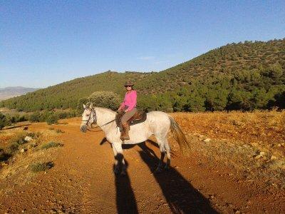 Ruta a caballo en Cogollos de Guadix de una hora