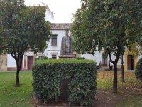 Conoscere ogni angolo di Granada