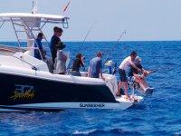 散步划船和钓鱼浮潜