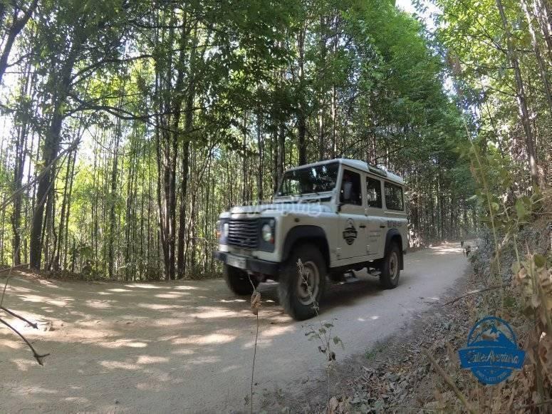 Ruta 4x4 Pilones1