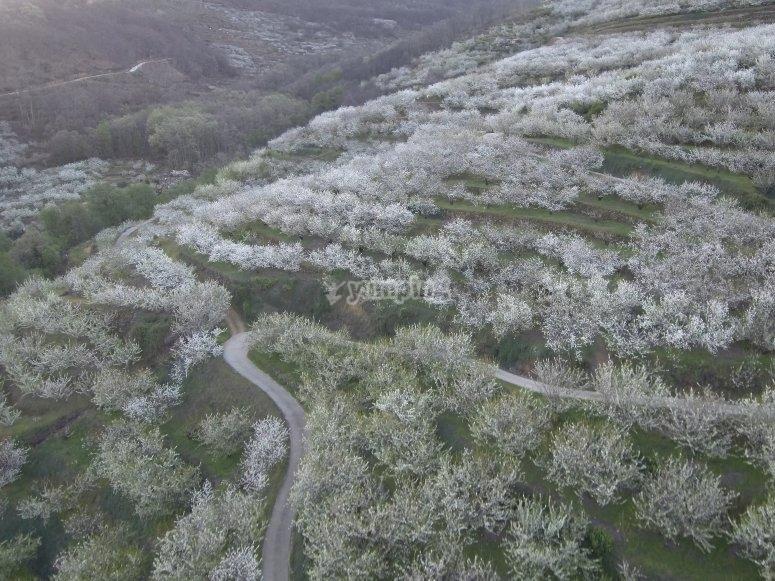 Ruta 4x4 cascadas Valle del Jerte