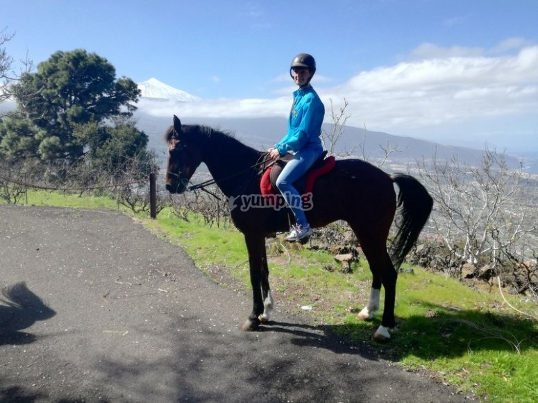 Tenerife´s sights by horse