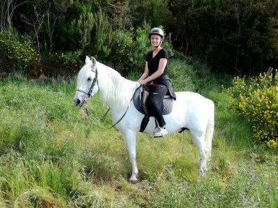 2h Horse Ride in La Orotava NON Residents