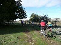 Excursiones en bicicleta para grupos