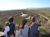 Safari in 4x4 and boat in Delta Ebro Natural Park