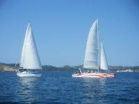 双体船和帆船