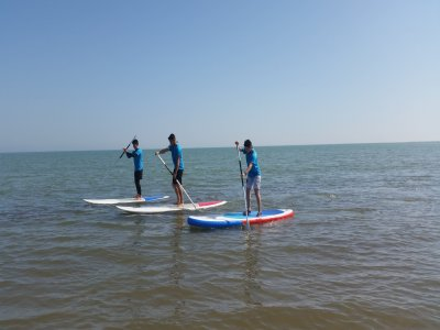 Paddle surf rental in the Ebro Delta 1 hour