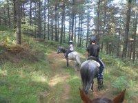campamento con los caballos