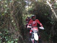 Enjoy the trail