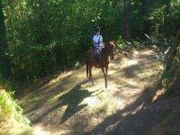 骑马马背上营