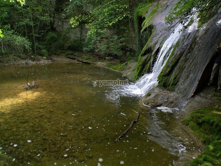 美丽的自然环境