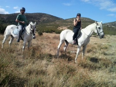 1h Horse Trip to Miraflores for couples