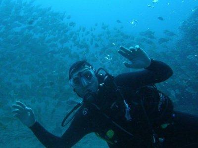 Padi Open Water en Las Palmas 3 días