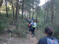 Hiking expedition through the forest