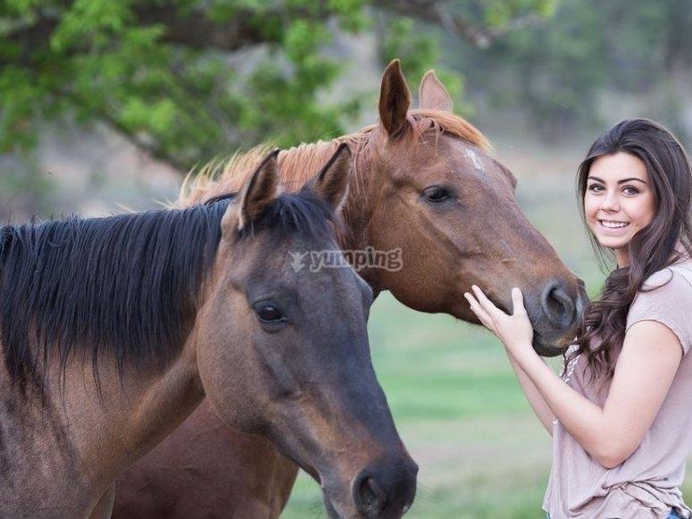 Simpaticos caballos