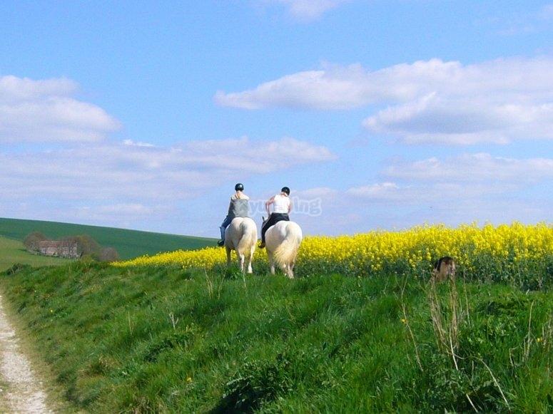 Spring landscape on horseback
