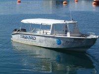 Barco Hendaya