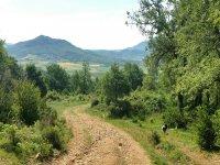 Hiking in the Sierra de Madrid