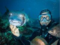 Tocando especies submarinas