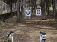 Aiming with the bows at the targets